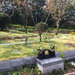 福山の樹木葬 コスモガーデンを見学しました
